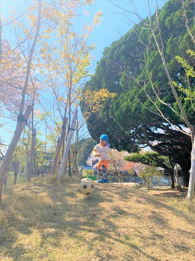 佐賀白石 わかば保育園 園庭 桜13