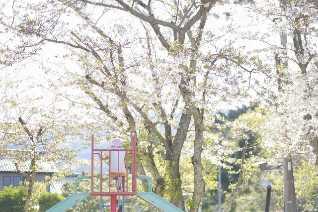 佐賀県 白石町 保育園 春 諸石撮影6