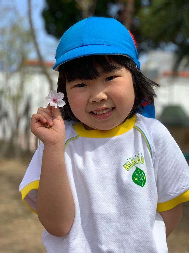 桜と真新しい体操服がかわいい園児