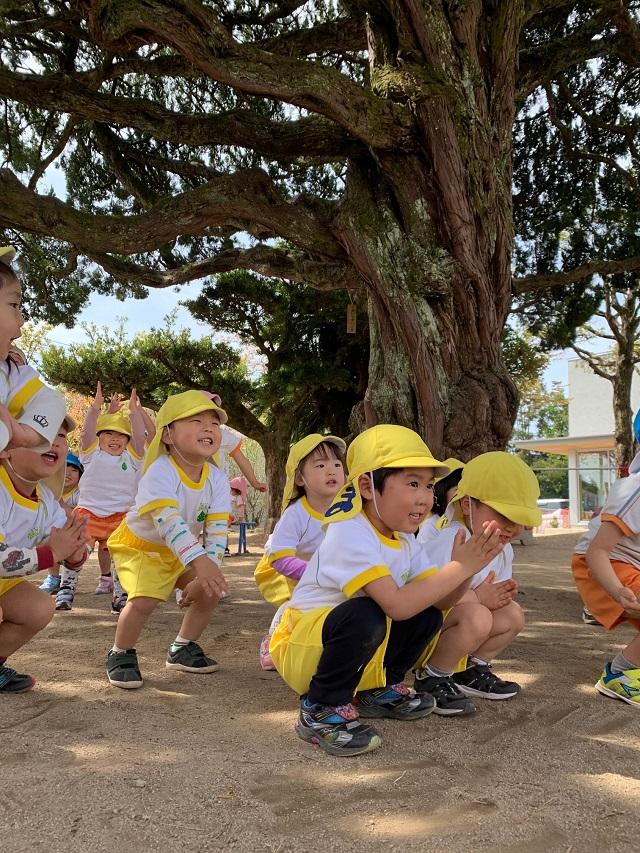 元気いっぱいの園児 毎日体操